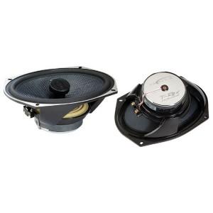 """DB Audio T-Rex 69.1 240W 6"""" x 9"""" Speakers"""